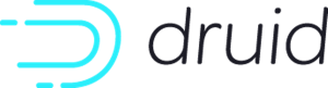 Druis project logo