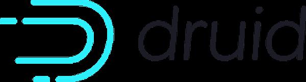 Druis project logo