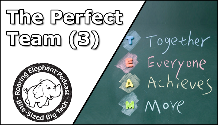 Episode 259 – The Perfect Team (3)